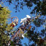 antenna linefiber 5